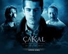 cakal film
