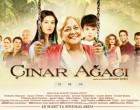 <b>Cinar Agaci (2010) - Film</b>